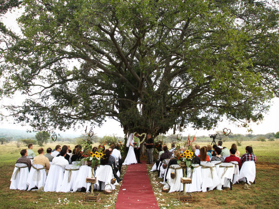Weddings at Izintaba